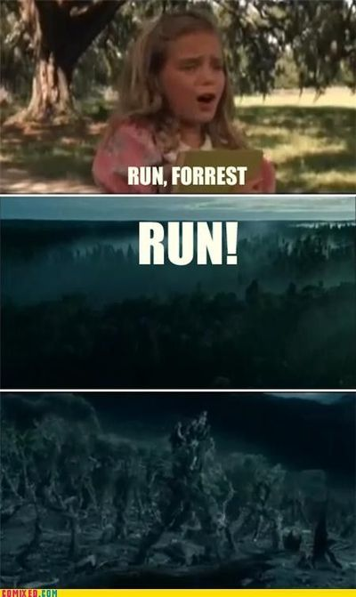 Run Forest Run Meme
