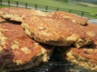 Paleo Salmon Patties