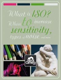 Understanding ISO: when to increase sensitivity, types of noise and more.