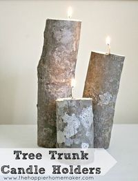 DIY Tree Trunk Candle Holders