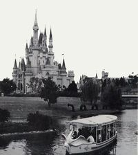 vintage disney world swan boats - I miss these.